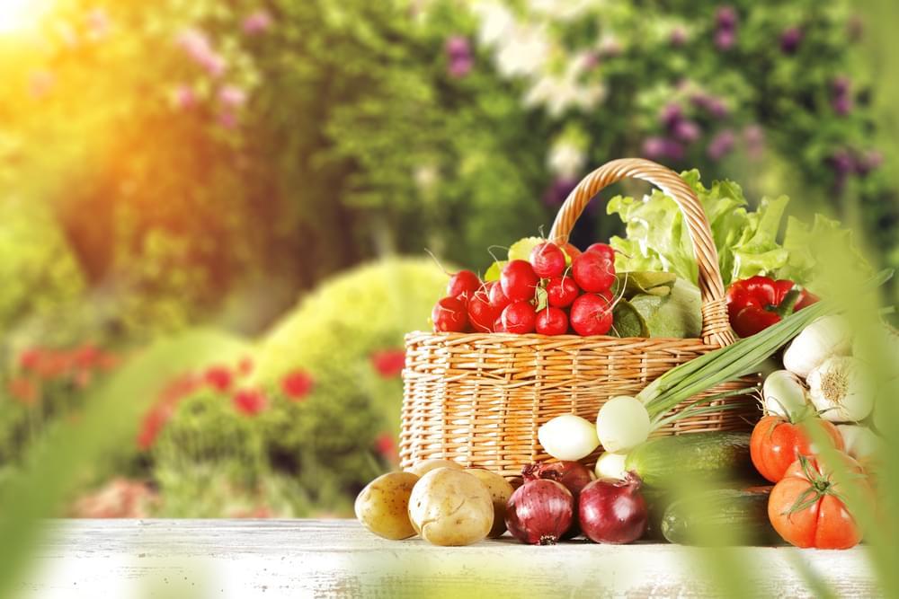 5 loại thực phẩm giúp cai thuốc lá và cân bằng glucose huyết 1