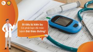 Đi tiểu có kiến bu – Có phải bạn đã mắc bệnh Đái tháo đường?