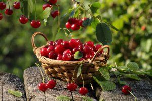 7 loại thực phẩm giúp cân bằng glucose huyết và cải thiện giấc ngủ