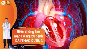 Biến chứng Tim mạch ở người bệnh Đái tháo đường