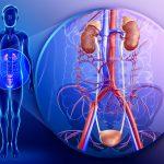 Tác động của tăng huyết áp lên cơ thể